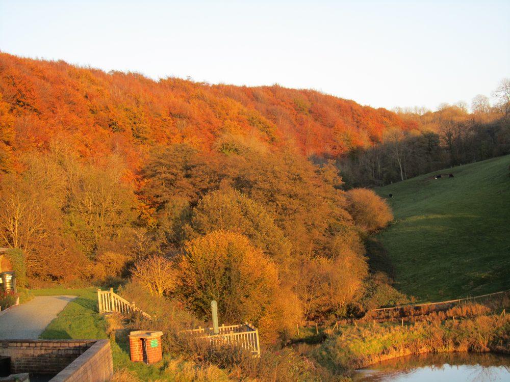 autumn at Brook Farm