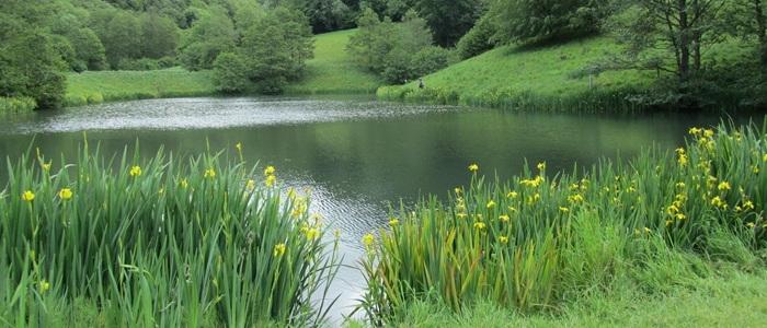 Brook Farm Lake view