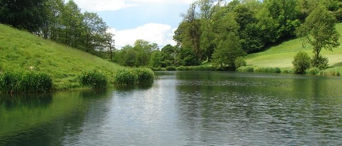 Brook Farm Lake